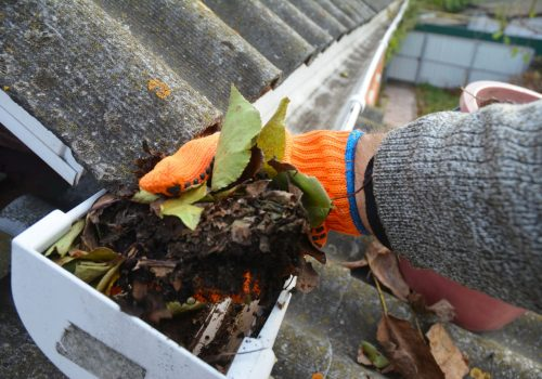 gutter-cleaning2
